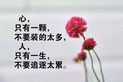 精辟人生感悟经典句子 人生哲理经典语句