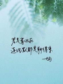 简短有意境的唯美句子 唯美的句子。有意境的。
