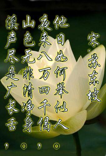 佛教优美诗句 关于佛教的诗词
