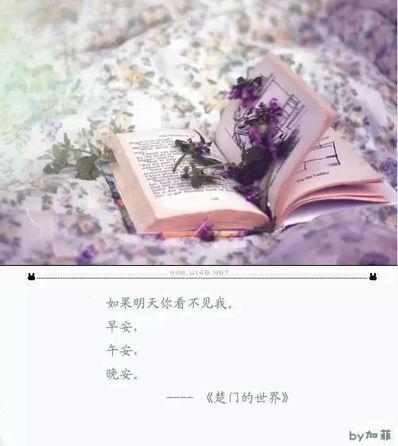 希望被宠爱的句子 表达宠爱的句子