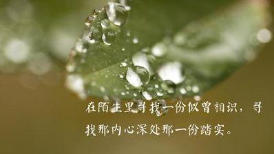 心情平静的优雅句子 形容心情平静的句子有哪些?