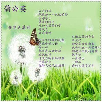 """形容风凉爽的诗句 形容""""夏天风吹的很凉快""""的诗句有哪些?"""