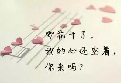 心碎到放手的句子 心碎的句子,让人痛到心碎的句子有哪些d