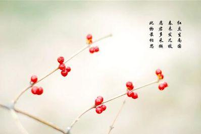 关于花朵的爱情诗句 有关花和爱情的诗句