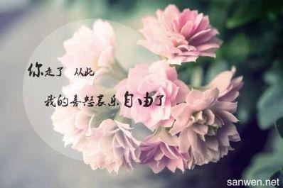 关于花和爱情的唯美句子 有关花的爱情句子