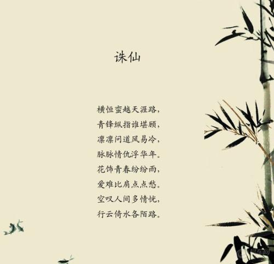 经典网络小说名言 网络小说名言名句