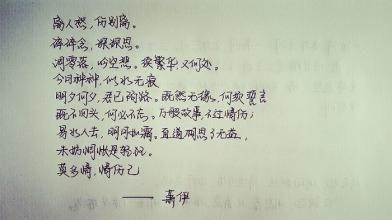 网络小说名句经典语录 求大量玄幻小说里的经典句子