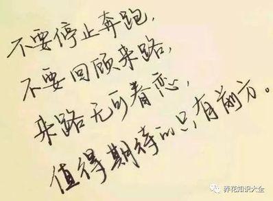 人生的美文短句 关于人生感悟的美文