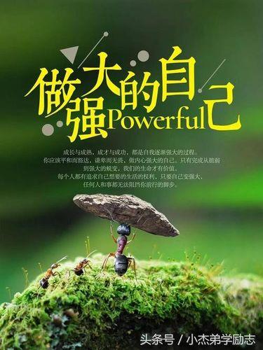 生活感悟正能量的句子 关于生活中正能量的句子