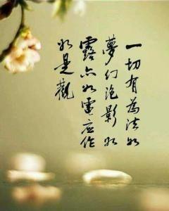 使人静心的句子 让人看后静心的文章 或句子
