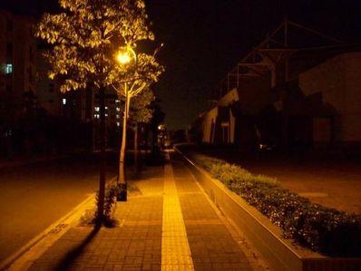 夜晚路灯下的心情短句